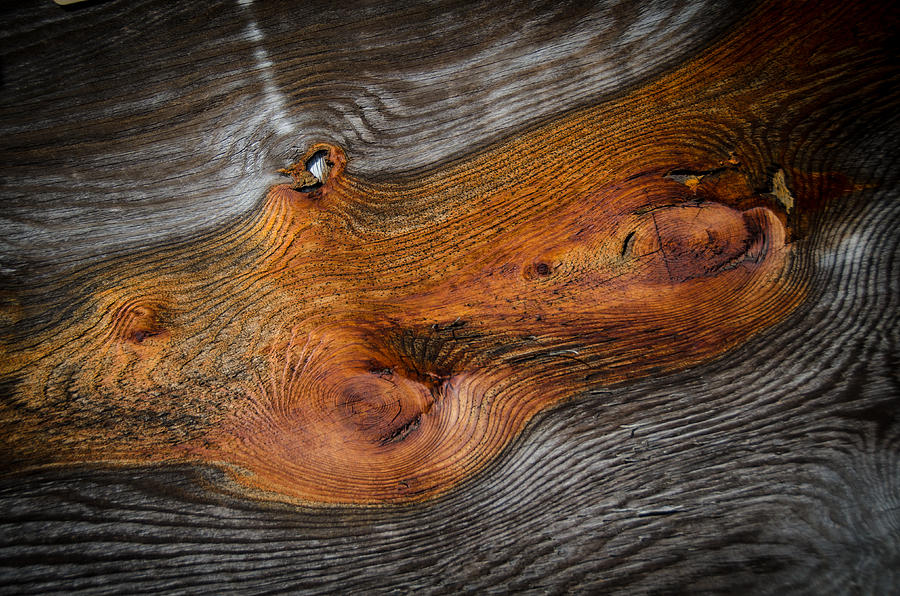 Knotty Plank by Ron White
