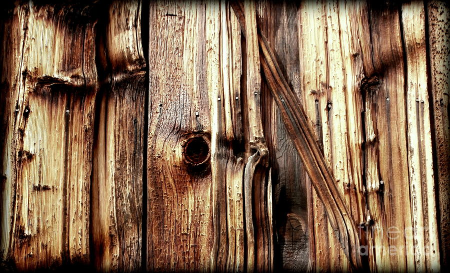 Knotty Wood Grain Photograph By Janine Riley