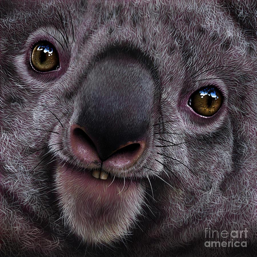 Koala Painting - Koala by Jurek Zamoyski