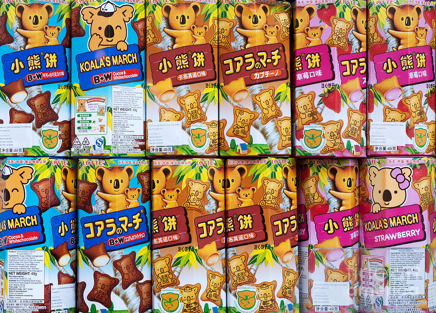 Koalas Photograph - Koalas March Biscuits by Rick Piper Photography