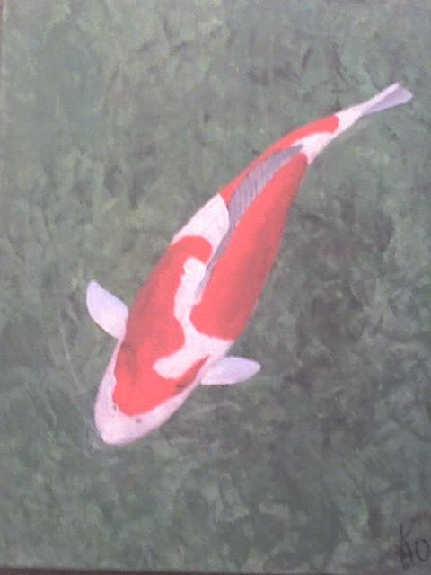 Kohaku Painting by Stephen Thomson