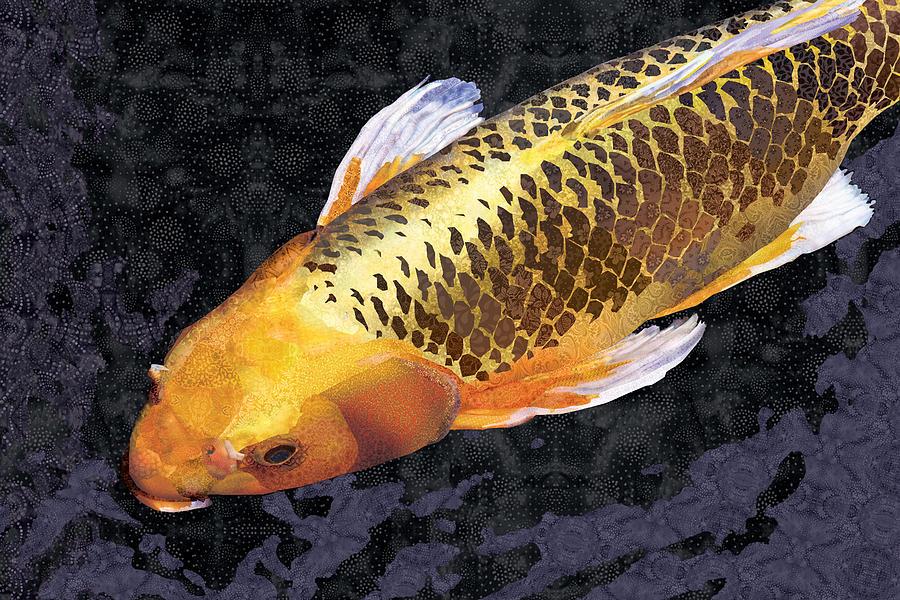 Koi golden digital art by robin morgan for Koi art nature
