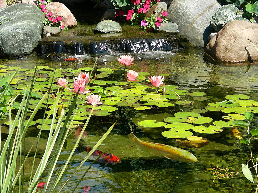 Waterfall Painting - Koi Pond by Doug Kreuger