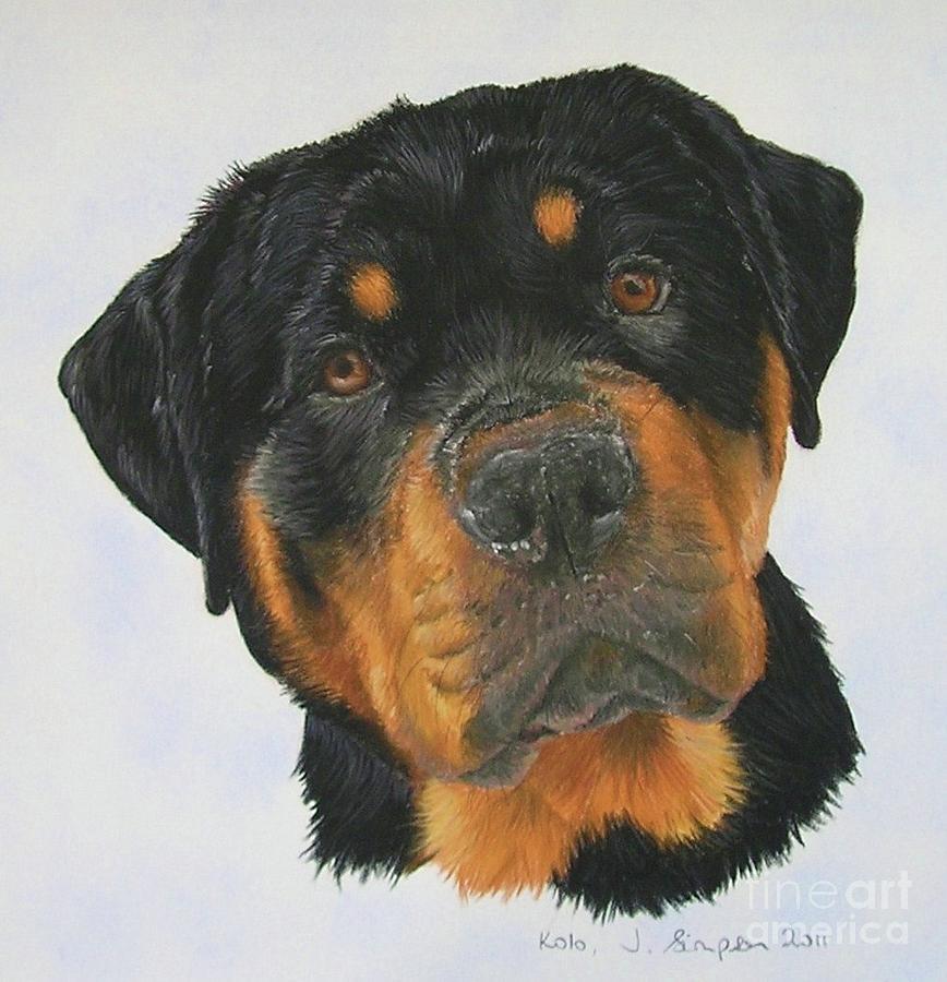 Dog Pastel - Kolo by Joanne Simpson