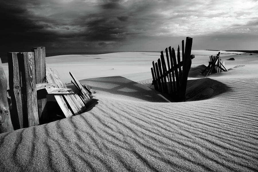 Fence Photograph - Konfrontation by Dmitry Kulagin
