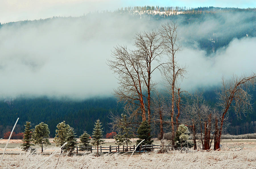 Landscape Photograph - Kootenai Frost by Annie Pflueger