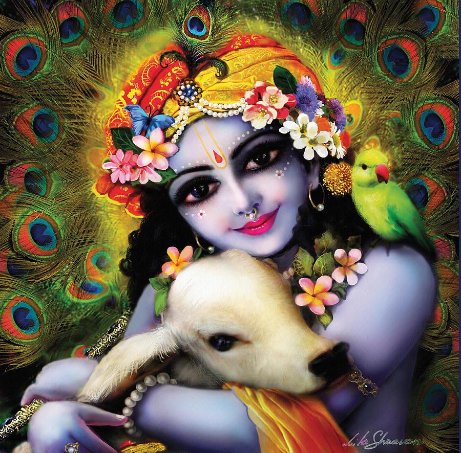 Radha Painting - Krishna Gopal by Lila Shravani