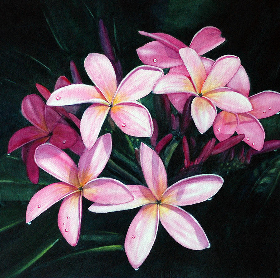 Floral Watercolors Painting - Kuu Morning Dew by Luane Penarosa