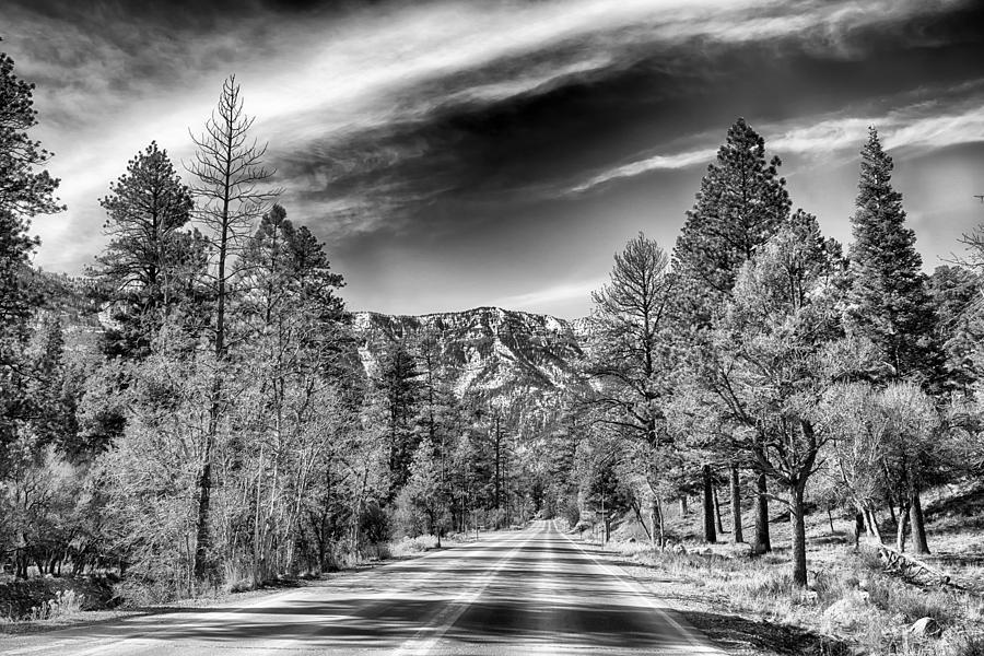 Nature Photograph - Kyle Canyon Road by Howard Salmon
