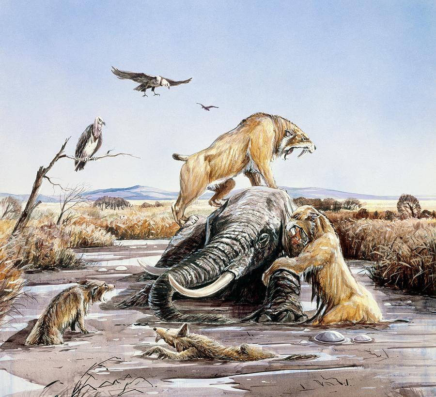 Картинки древних хищников