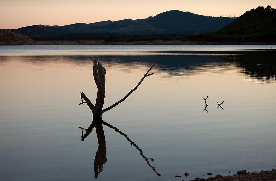Swamp Photograph - La Estanca-perdiguero - 2 by RicardMN Photography