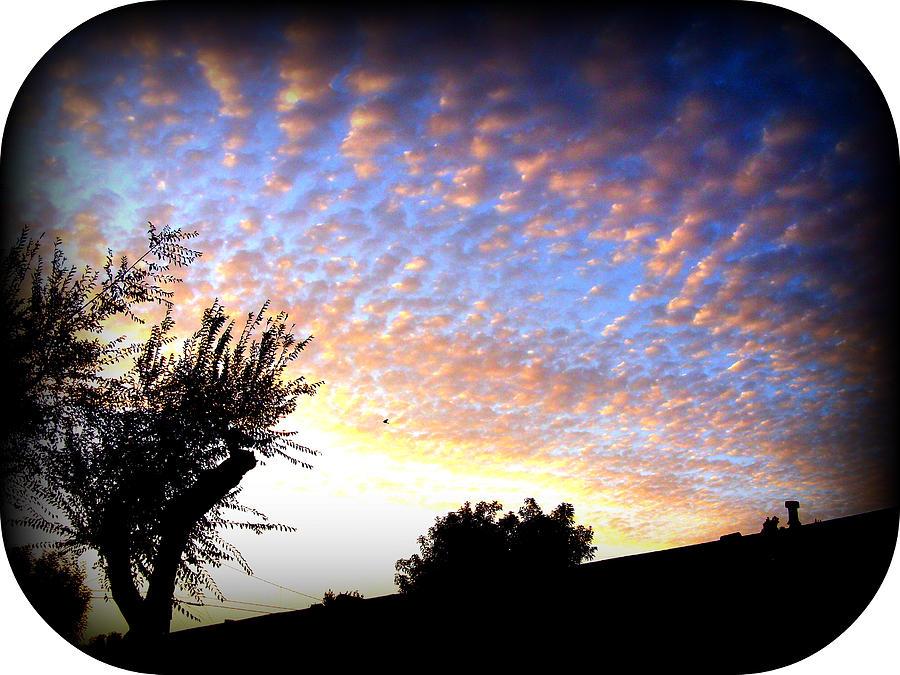 Nature Photograph - La Puente Sunset by Misty Herrick