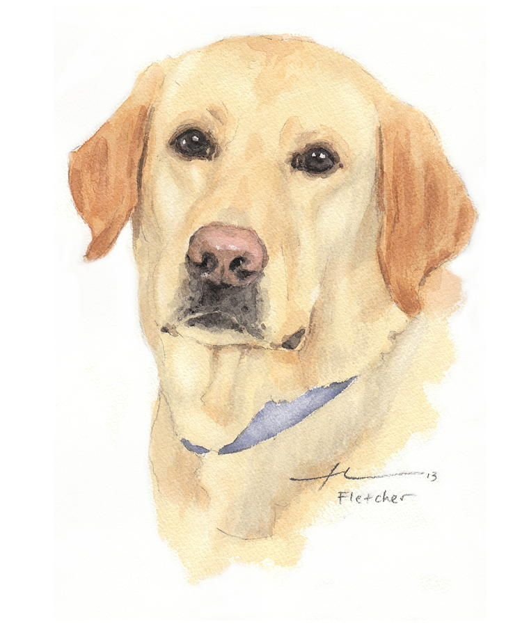 Labrador Dog Watercolor Portrait  Painting by Mike Theuer