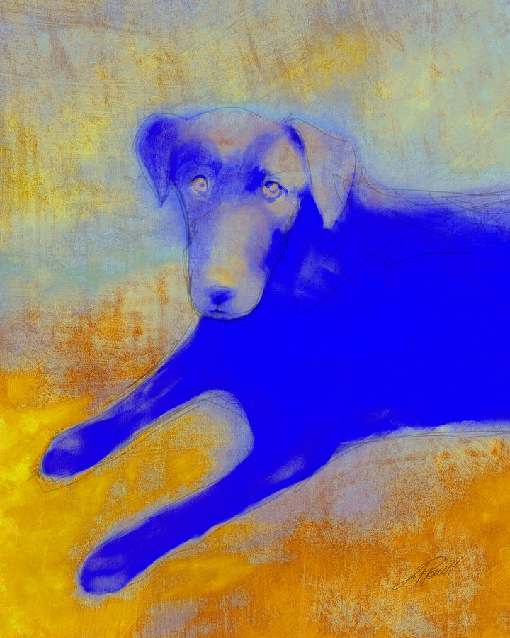 Dog Digital Art - Labrador Retriever In Blue And Yellow by Ann Powell