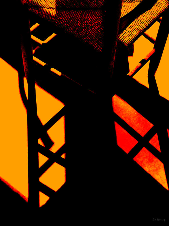 Ladderback Photograph - Ladderback Flamenco by Lin Haring