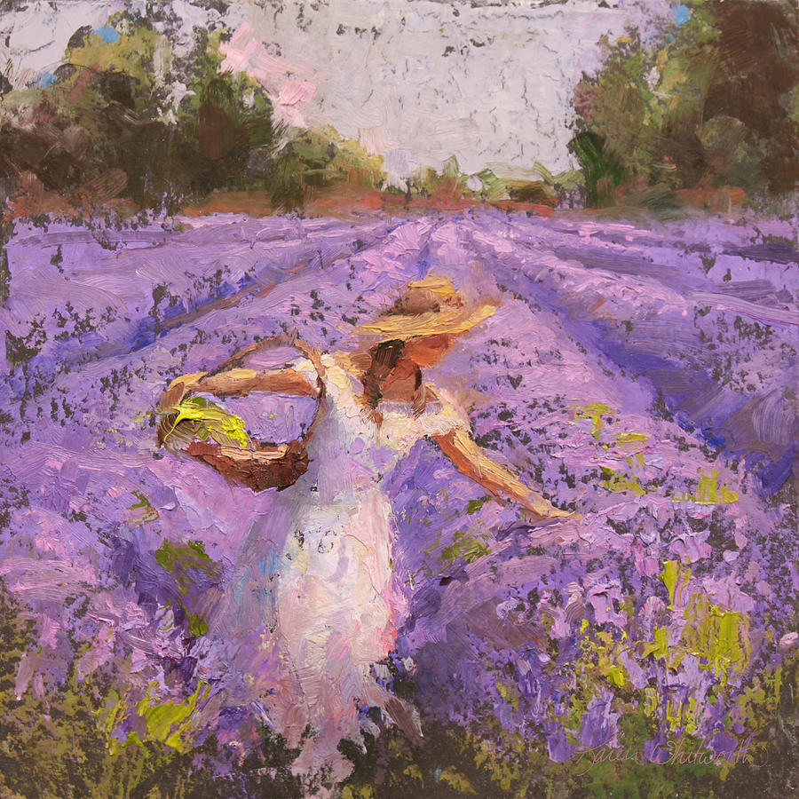 Woman Picking Lavender In A Field In A White Dress Lady
