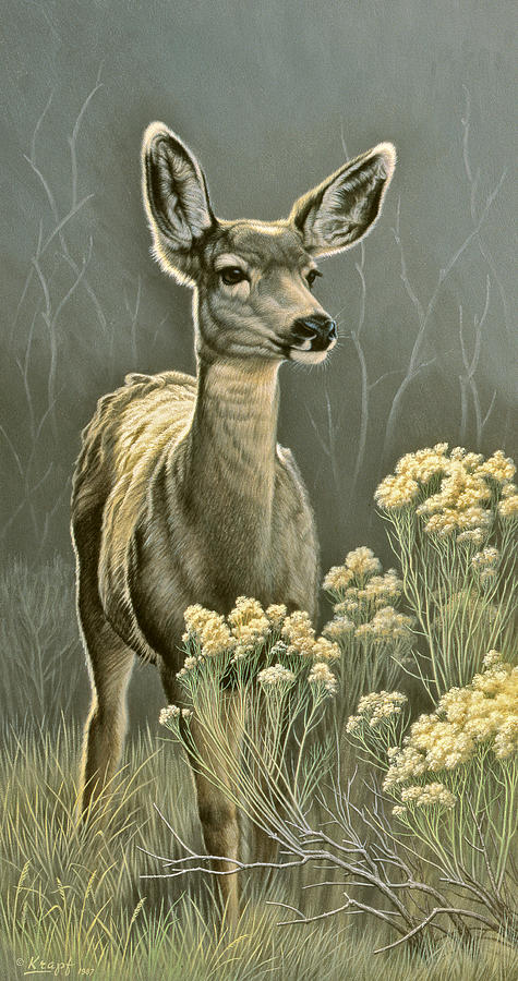 Wildlife Painting - Lady by Paul Krapf