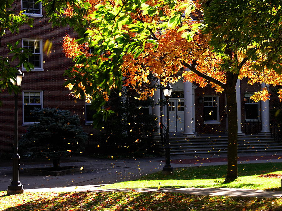Lafayette College Photograph - Lafayette College Easton Pa In Autumn by Jacqueline M Lewis
