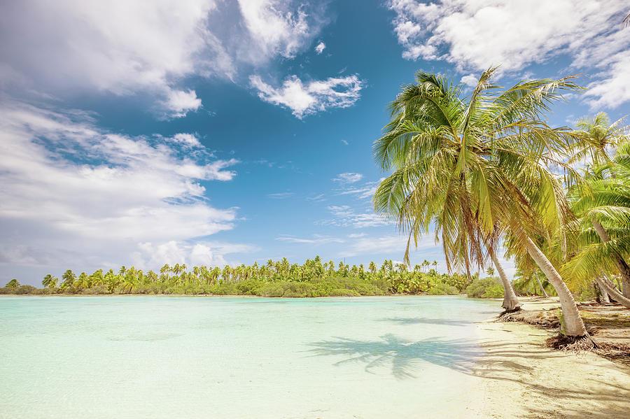 Lagoon French Polynesia,fakarava Photograph by Mlenny