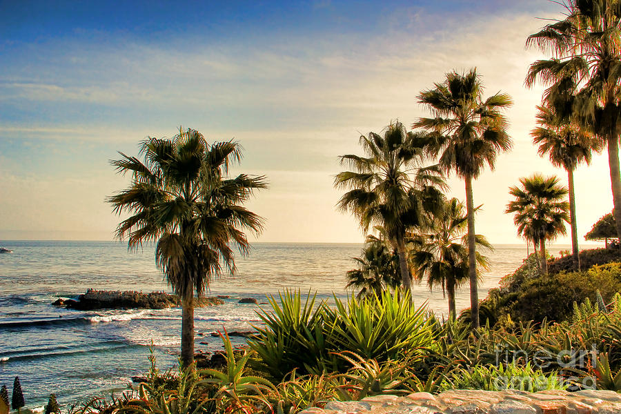Laguna Photograph - Laguna Beach by Mariola Bitner