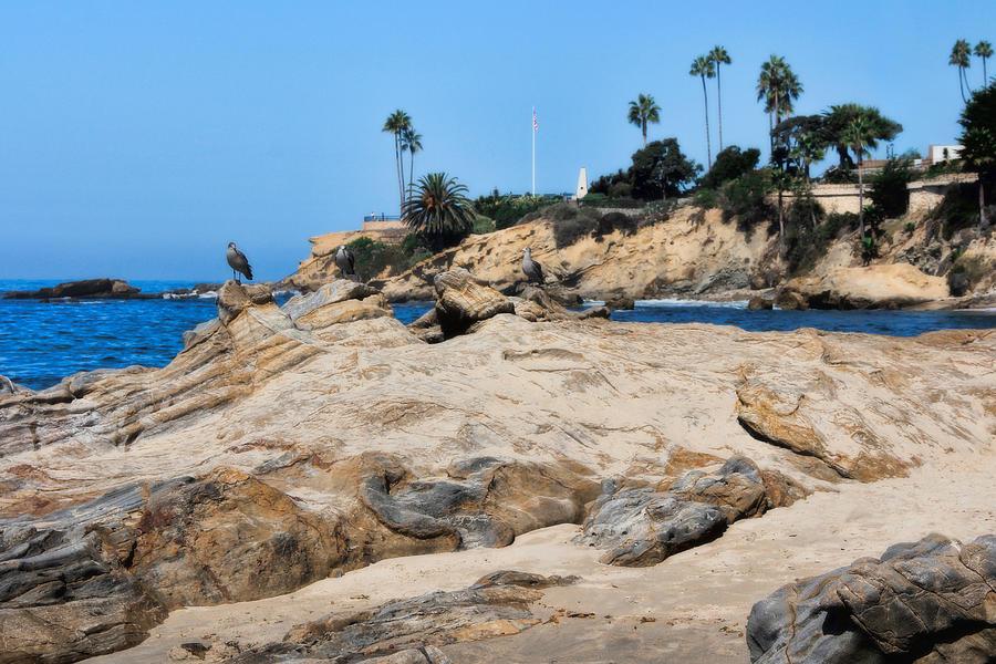 Laguna Beach Photograph - Laguna by Tammy Espino