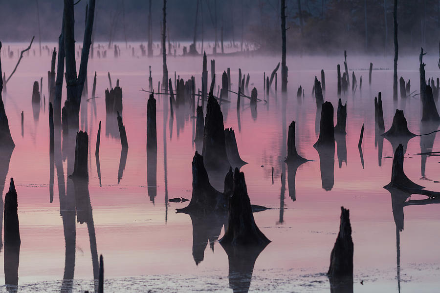Misty Photograph - Lake @ Morning by ??????? / Austin