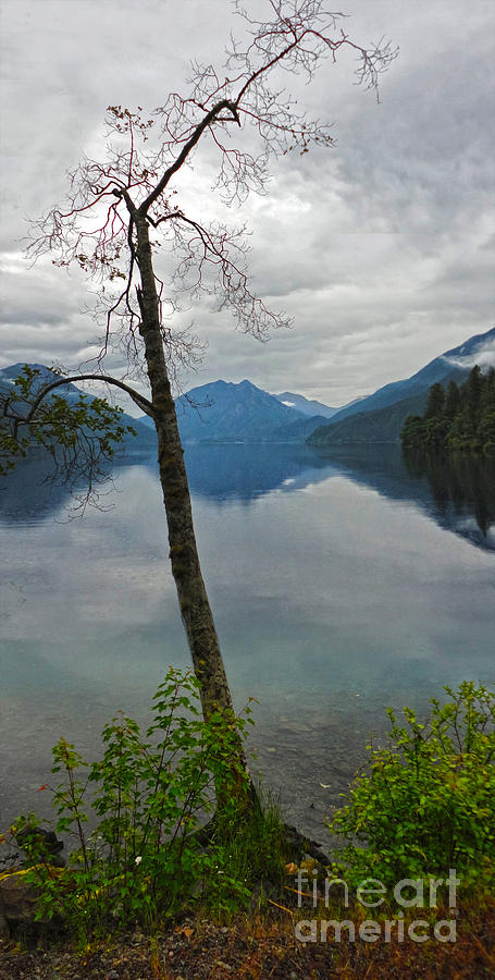 Lake Crescent Photograph - Lake Crescent - Washington - 01 by Gregory Dyer