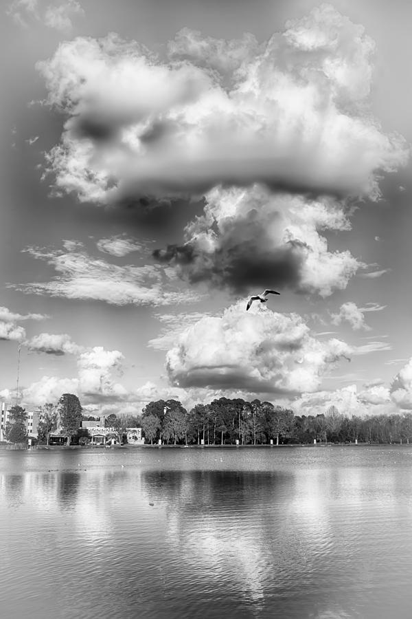Nature Photograph - Lake De Soto by Howard Salmon