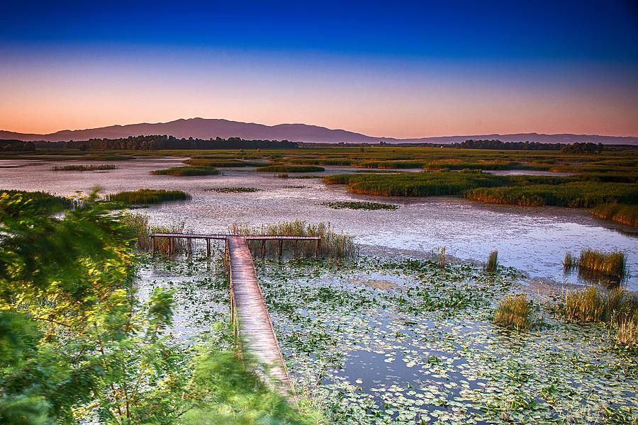 Lake Photograph - Lake Efteni by Okan YILMAZ