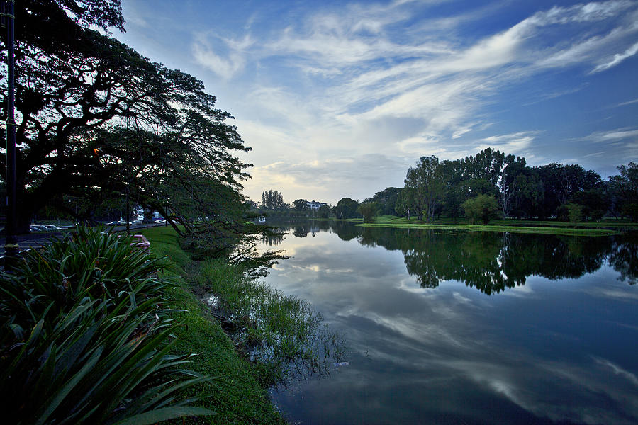 Landscape Photograph - Lake Garden by Chin Wei Jeffrey Ong