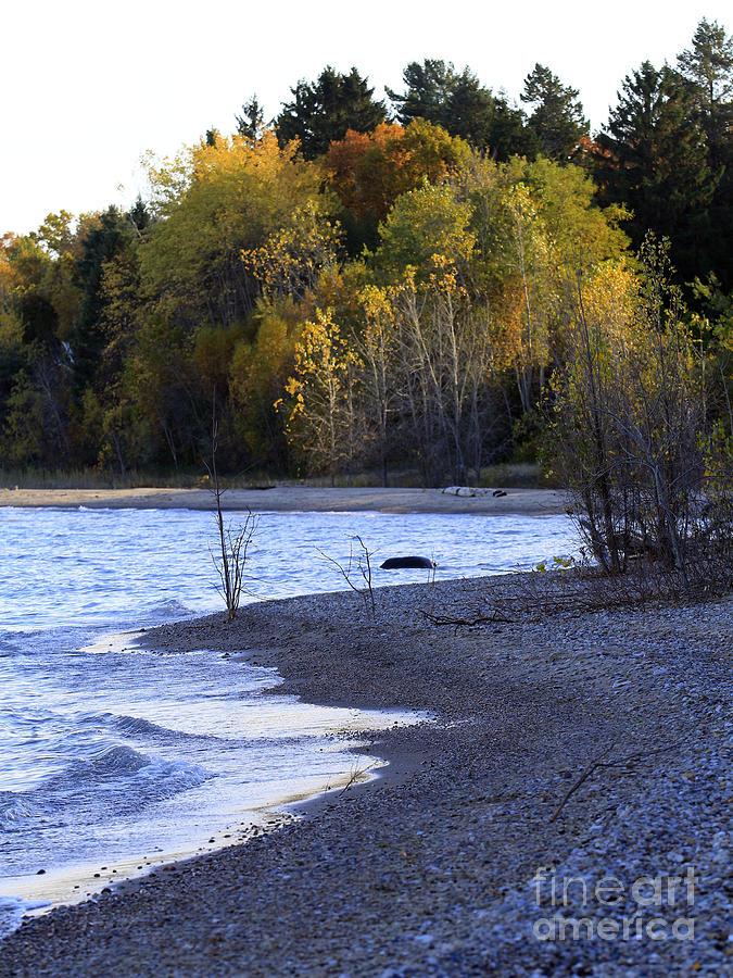 Fall Photograph - Lake Huron Shoreline In The Fall  by Kathy DesJardins