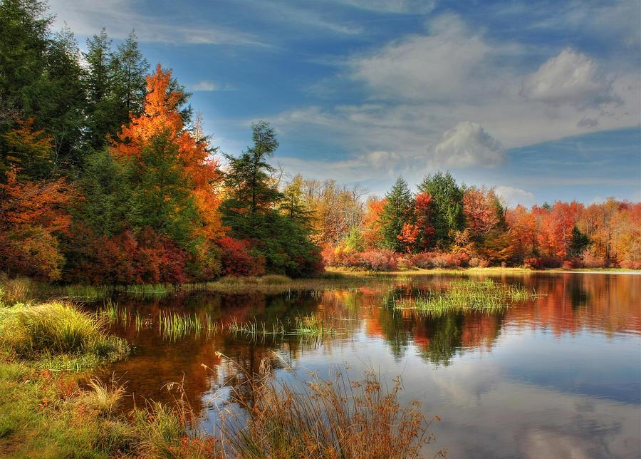 Landscape Photograph - Lake Jean Reflections by Lori Deiter