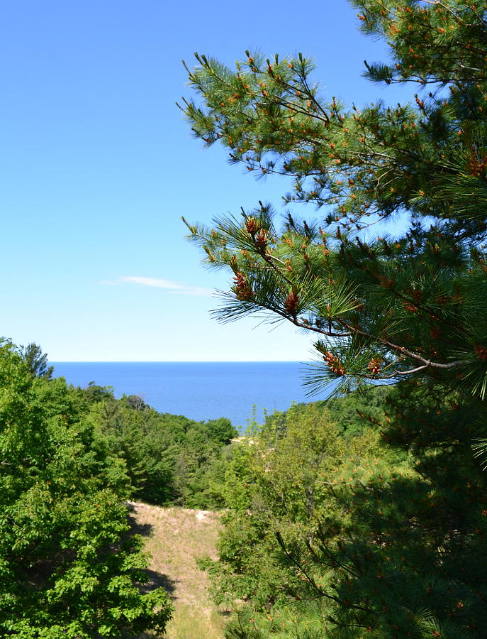 Lake Michigan Photograph - Lake Michigan From The Top Of The Dune by Michelle Calkins