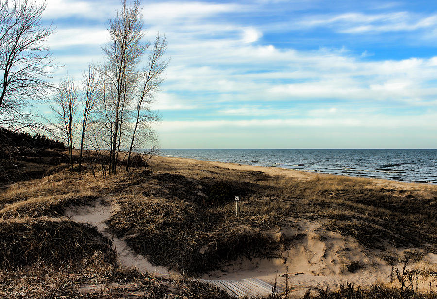 Lake Michigan Shoreline by Lauren Radke
