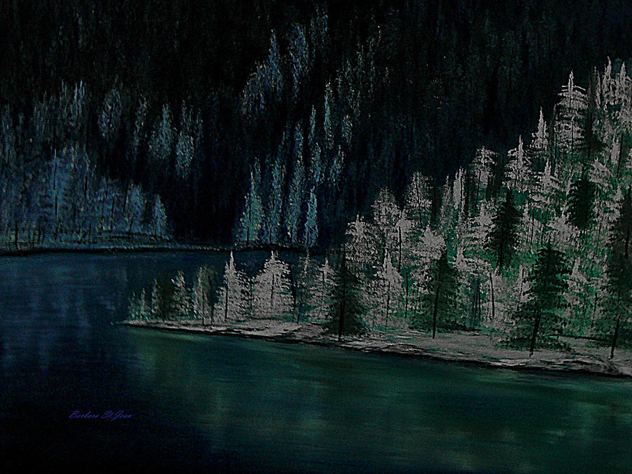 Lake Of The Woods Painting - Lake Of The Woods by Barbara St Jean