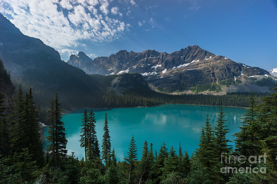 British Columbia Photograph - Lake Ohara by Carrie Cole