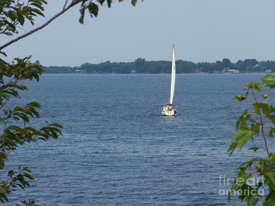 Lake Photograph - Lake Ontario Sailing by Kevin Croitz