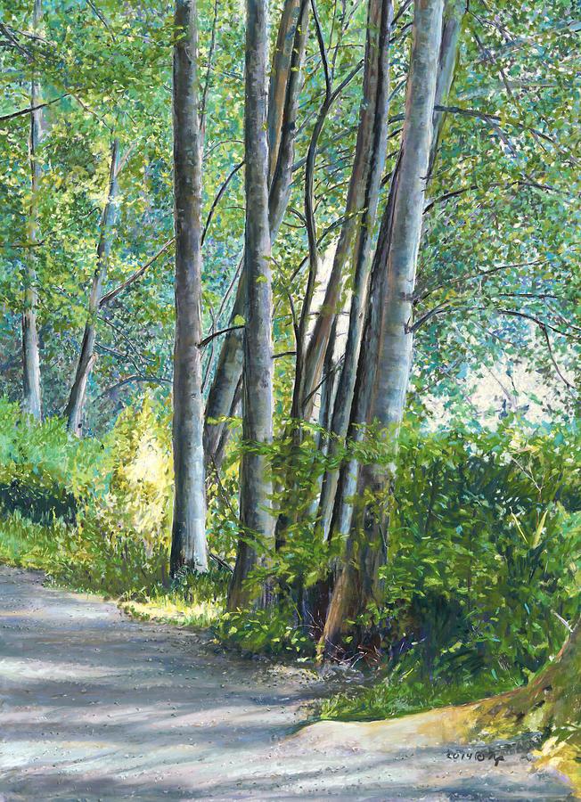 Lake Padden Series - Kathleen Keller Memorial Bench by Nick Payne