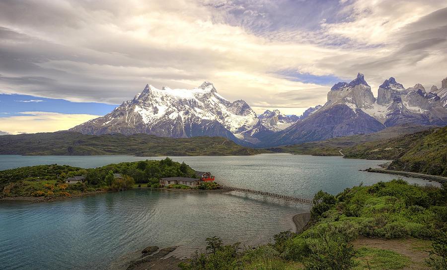 Patagonia T Shirts For Men