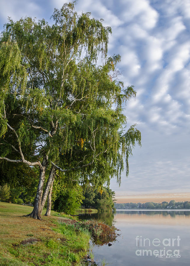 Lake Photograph - Lake Quannapowitt In Massachusetts  by Pat Lucas