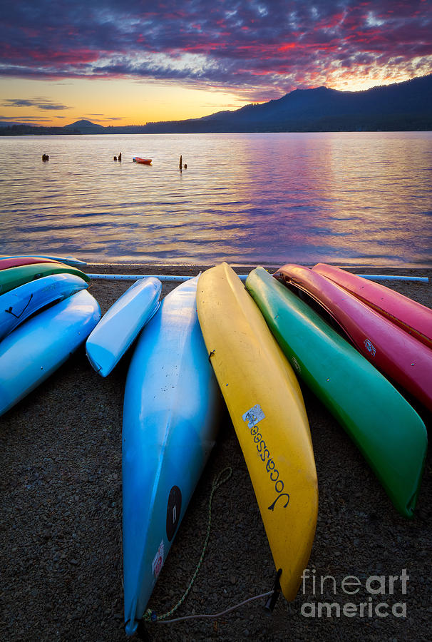 America Photograph - Lake Quinault Kayaks by Inge Johnsson