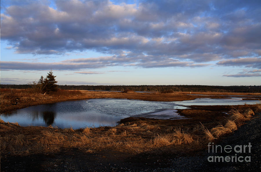Nova Scotia Photograph - Lake Reflection by Sandy MacNeil