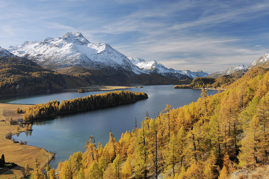 Lake Sils With Trees In Autumn, Piz Da Photograph by Martin Ruegner