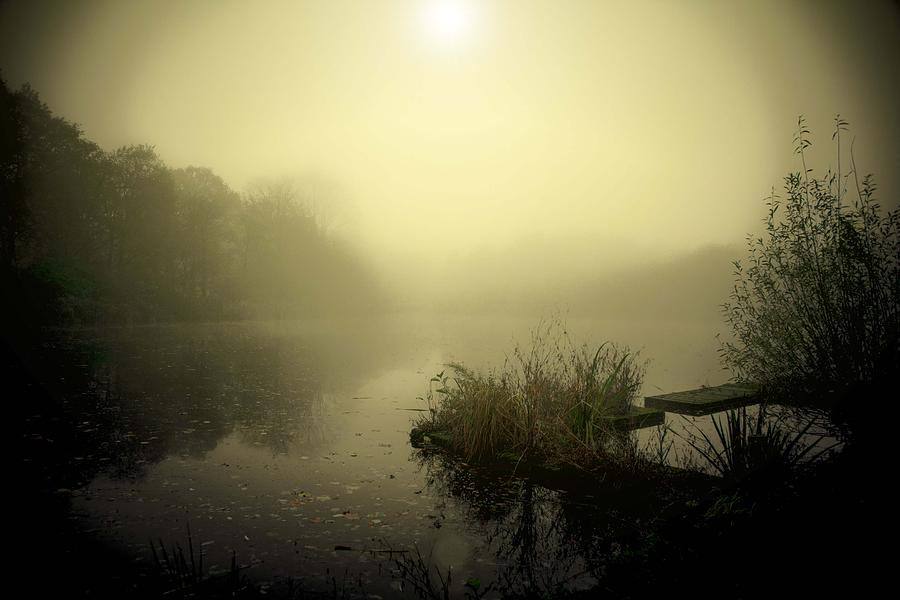 Groningen Photograph - Lake Stadspark Groningen by Aaldrik Bakker
