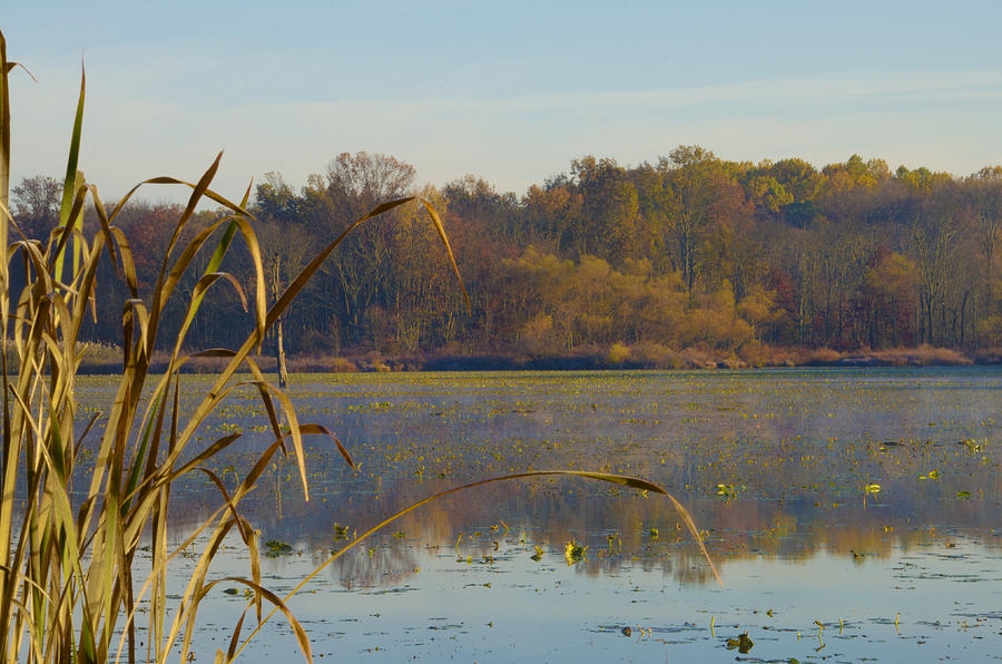 Lake Photograph - Lake Towhee In Autumn by Bill Cannon
