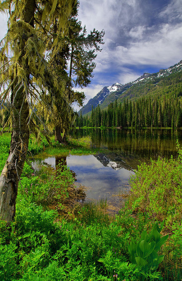 Washington Photograph - Lake Tucquala by Michael  Ayers
