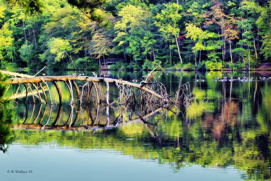 2d Photograph - Lake Waterford by Brian Wallace