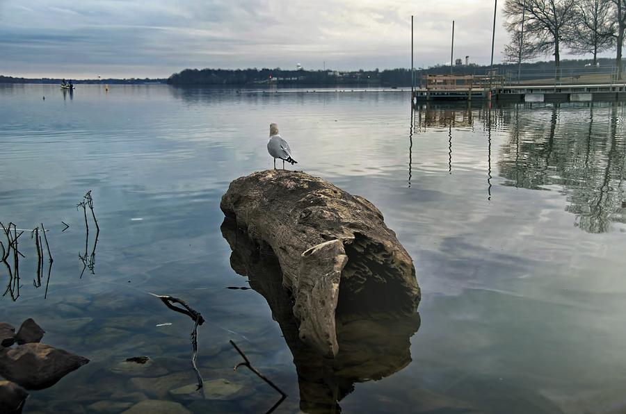 Lake Photograph - Lakeside by Steven  Michael