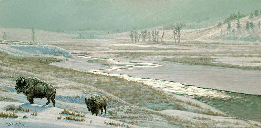 Wildlife Painting - Lamar Valley - Bison by Paul Krapf