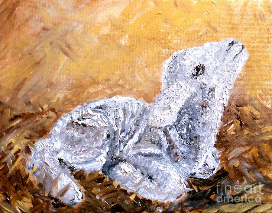 Lamb Painting - Lamb  by Amanda Dinan